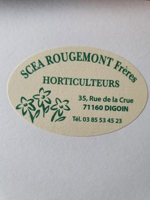 IllustrationSCEA ROUGEMONT FLEURS Digoin