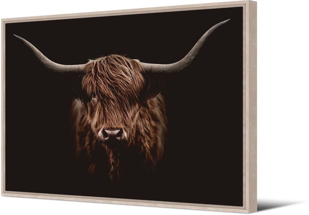 Image product Toile Bison 339179